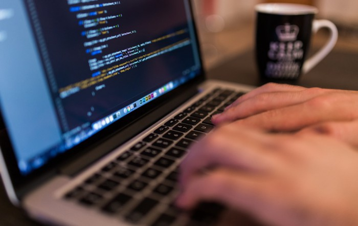 Hollandse nuchterheid binnen de ICT